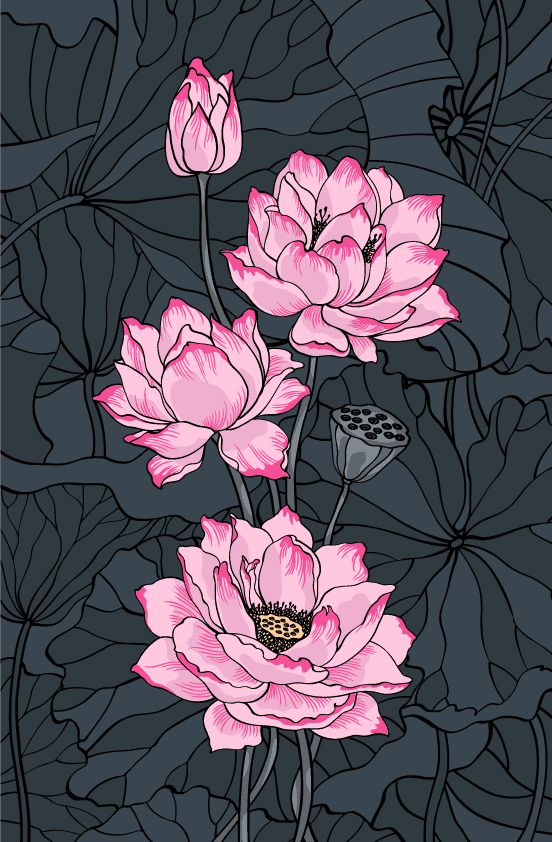 Pink Lotus Flower Symbols of Rebirth, Reincarnation and Resurrection