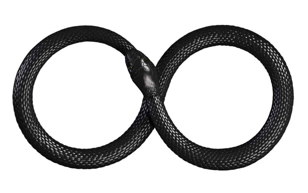 The Snake Eating Its Tail Ouroboros Image
