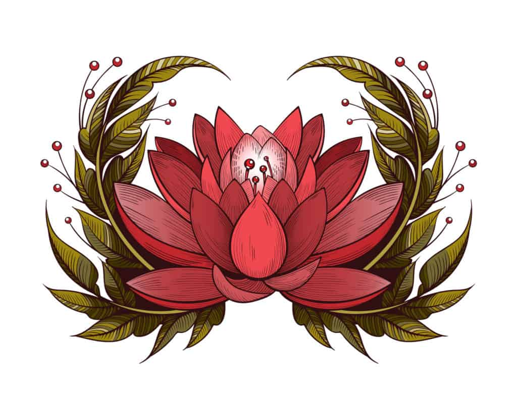 Red Lotus Flower Meaning And Symbolism Explained, An Illustration Depicting a Red Lotus