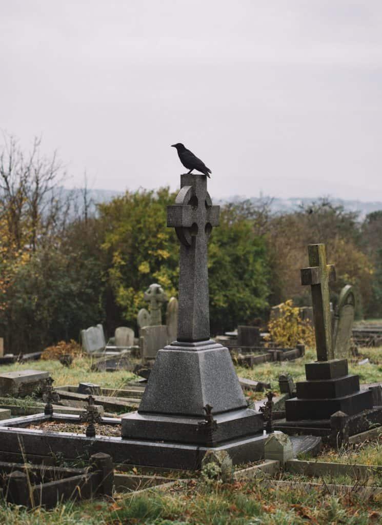 A Crow in Cemetery on an Irish Celtic Cross Symbol