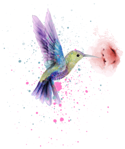 Hummingbird Symbolism, Spiritual Meaning And Spirit Animal Explained