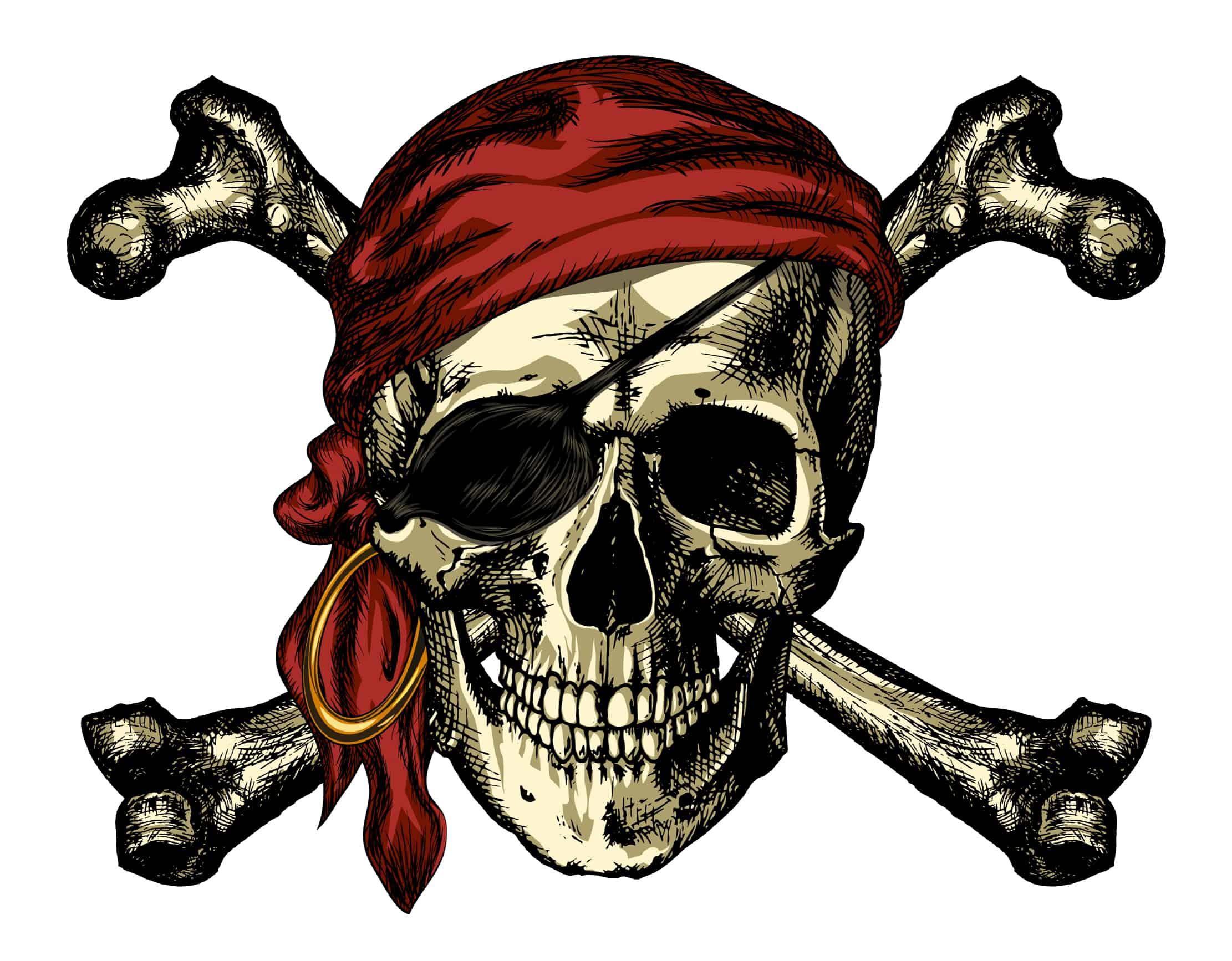 Skull and Crossbones Flag, Symbolism Meaning Origin, a Detailed Illustration of a Pirate Skull